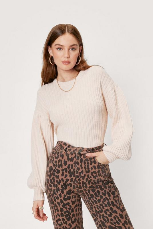 Wide Ribbed Balloon Sleeve Knit Sweater | NastyGal