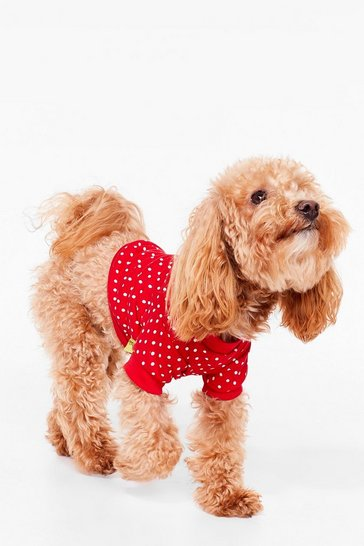 Red A Walk in the Bark Polka Dot Dog Sweater