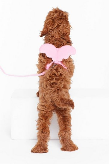 Womens Pink My Little Angel Winged Dog Harness