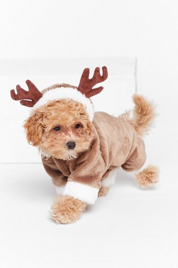 Brown Came to Sleigh Reindeer Dog Costume