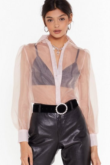 Blush Sheer We Go Again Organza Balloon Sleeve Blouse
