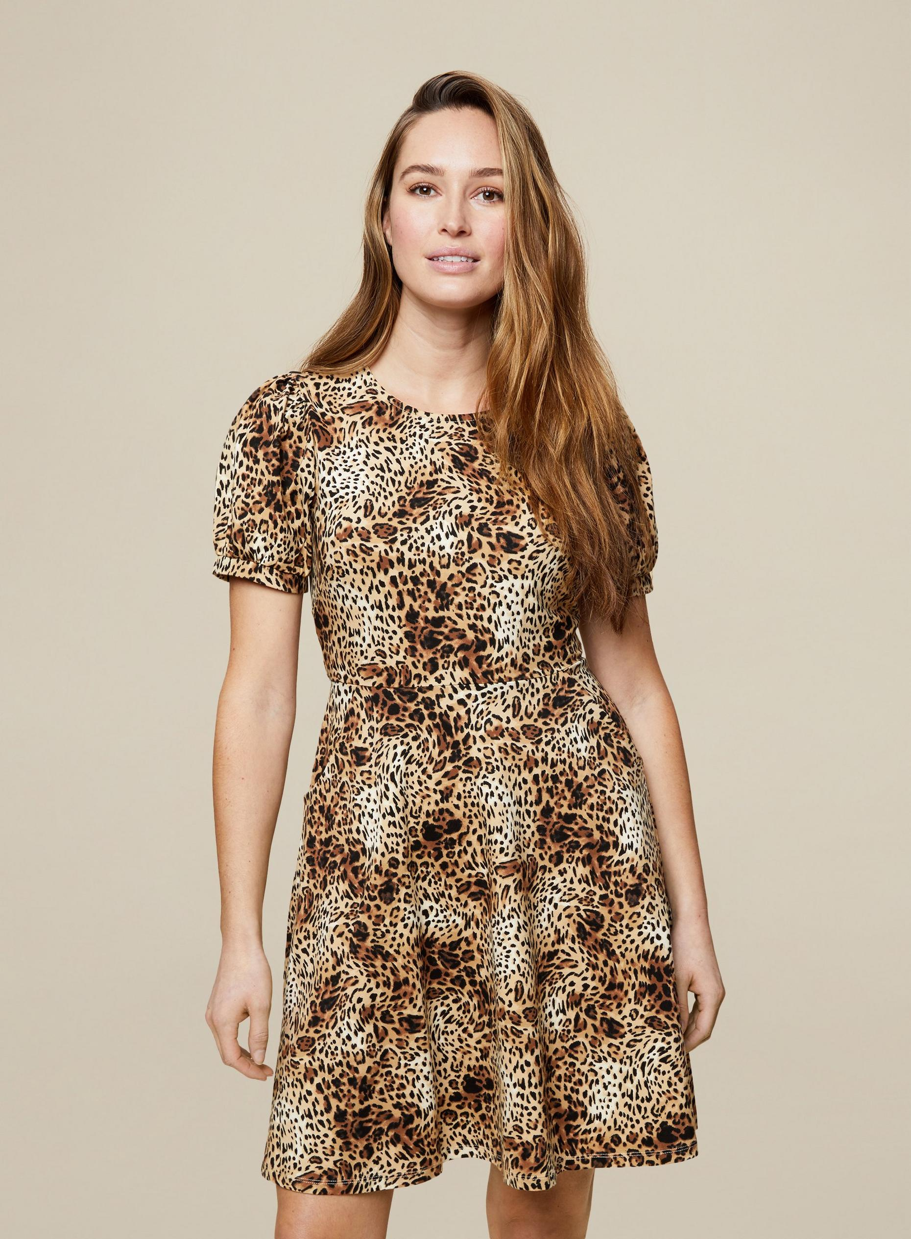 Animal Print T Shirt Dress